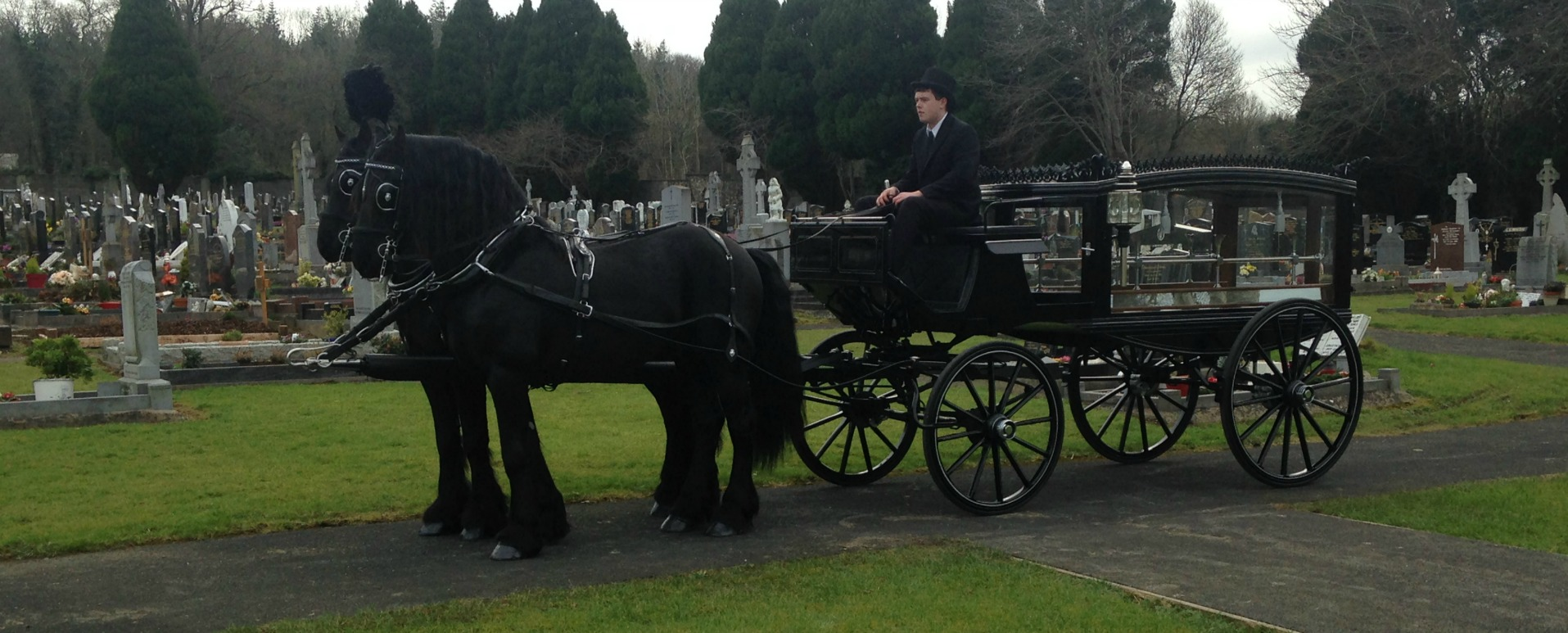 Melia Carriages Funeral Horse and Carriage